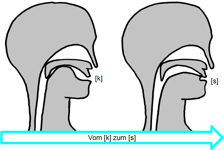 Artikulation des stimmlosen Verschluss-Reibelauts [k͜s]