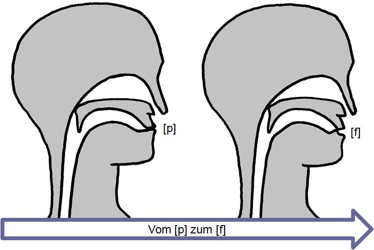 Artikulation des stimmlosen Verschluss-Reibelauts [p͜f]