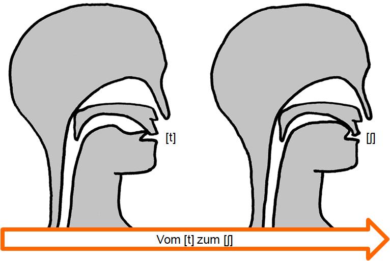 Artikulation des stimmlosen Verschluss-Reibelauts [t͜ʃ]