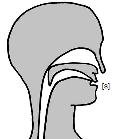 Artikulation des stimmlosen Zahn-Zischlauts